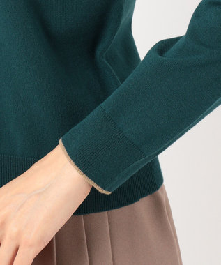 any SiS 【洗える】ラインポイント ニット ダークグリーン系