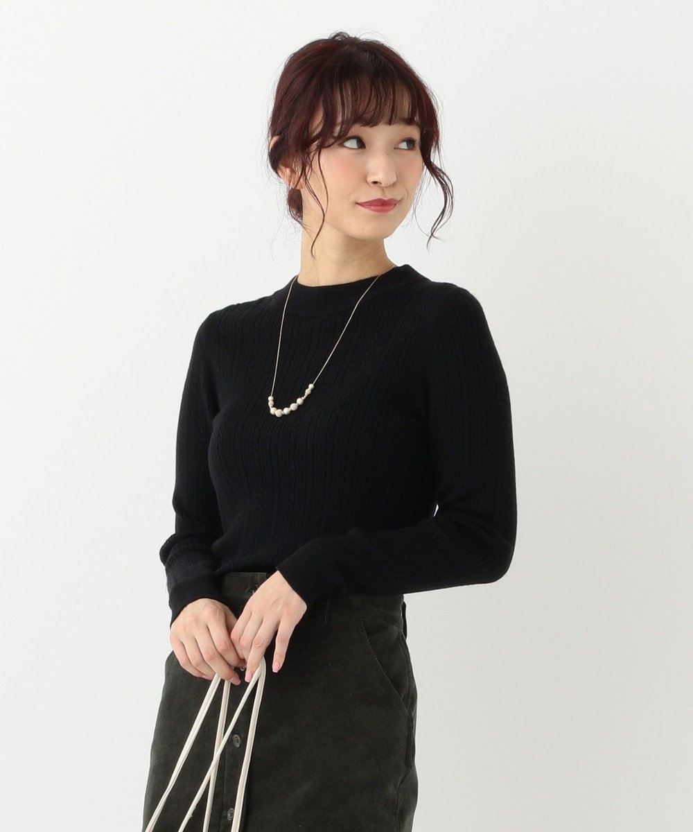 any SiS 【洗える】ミニケーブルタートル ニット ブラック系