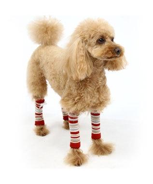 PET PARADISE ペットパラダイス レッグウォーマー(赤)[小型犬] 赤