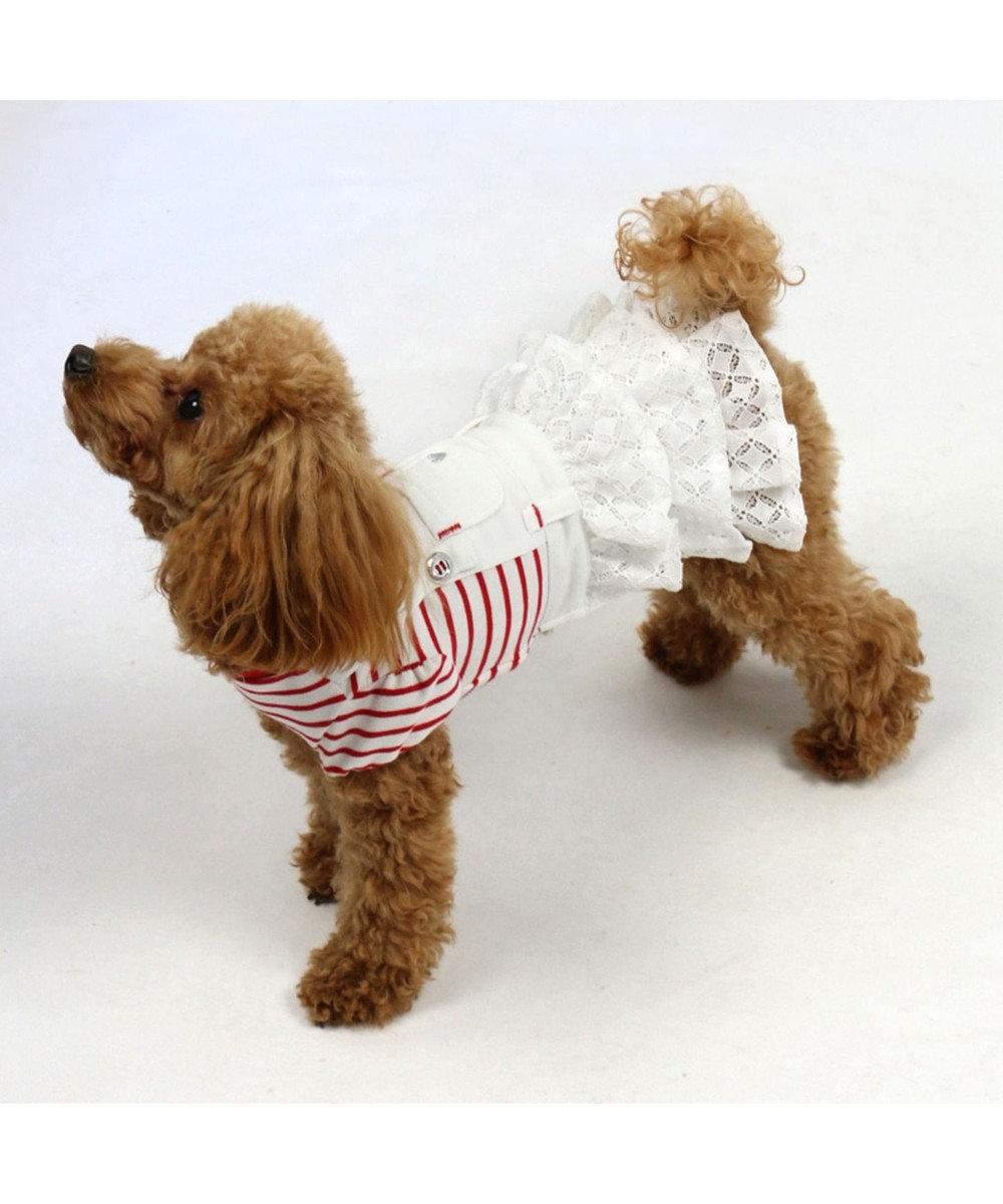 PET PARADISE ペットパラダイス レース ボーダー スカートつなぎ〔小型犬〕 赤