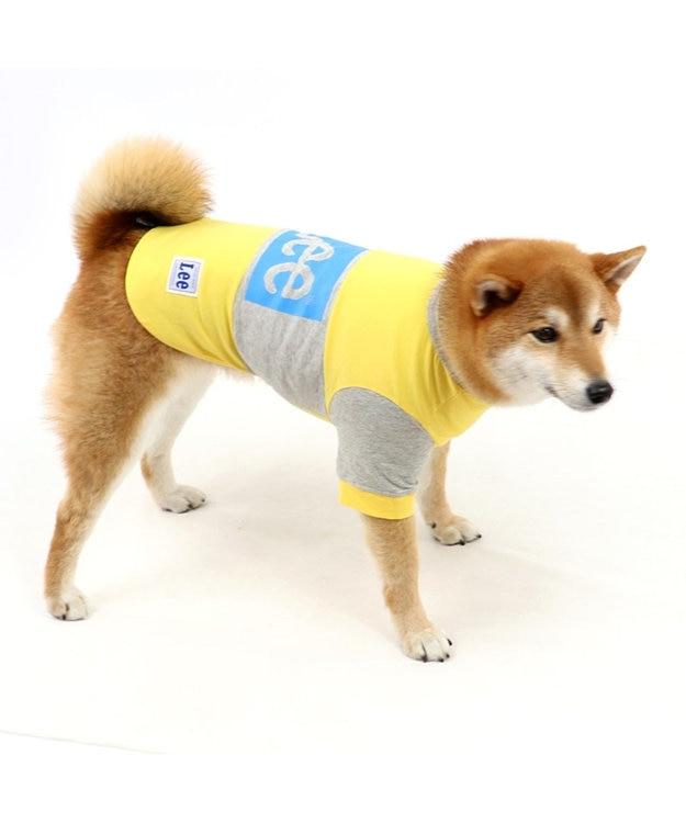 PET PARADISE Lee ボックス ロゴ Tシャツ 黄色〔中・大型犬〕