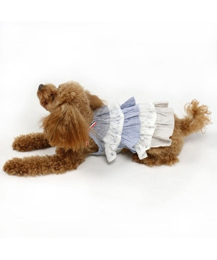 PET PARADISE ペットパラダイス フリル ワンピース ボーダー〔小型犬〕 青
