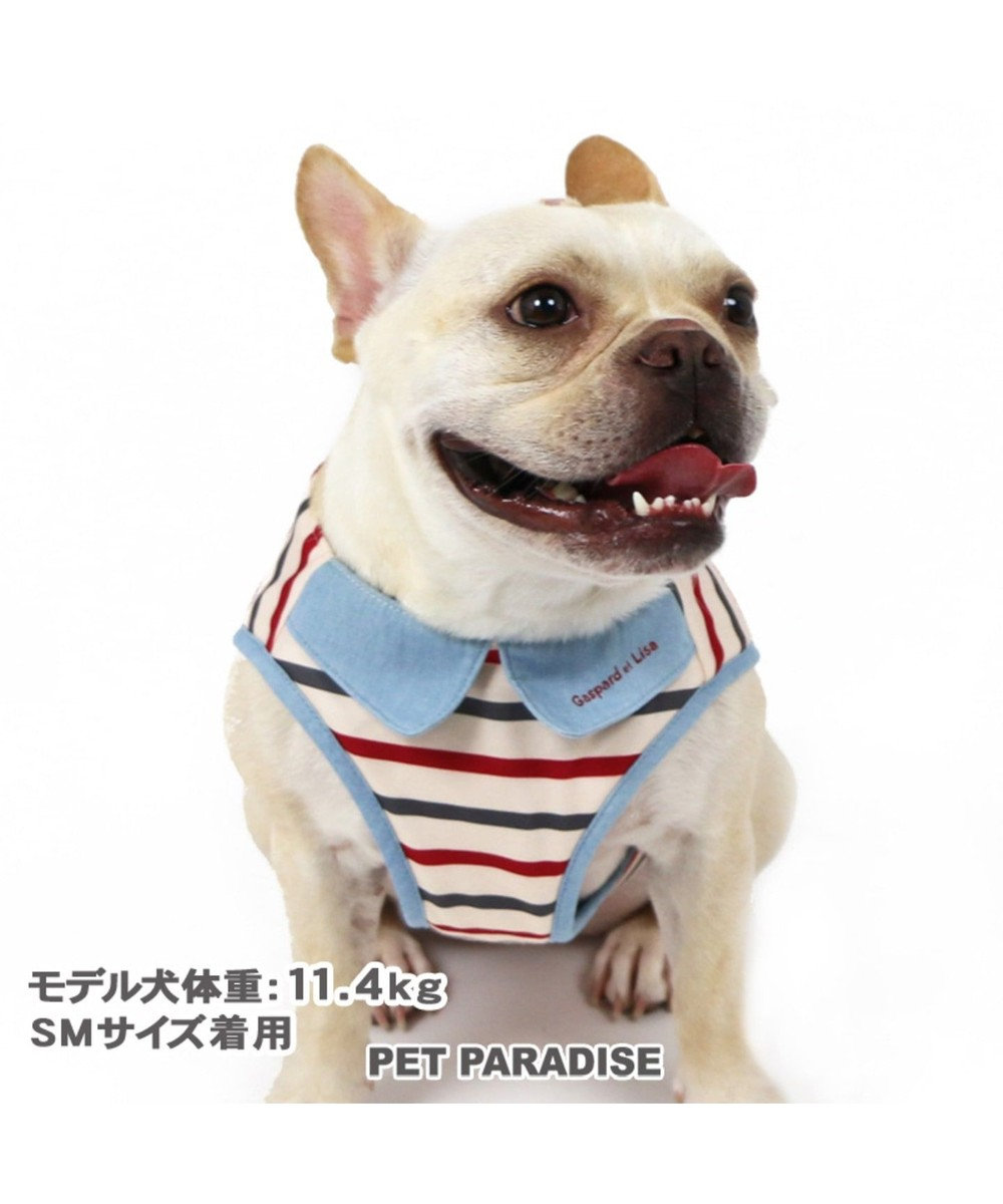 PET PARADISE 犬用品 ペットグッズ お散歩 ペットパラダイス 犬 ハーネス リサとガスパール 【S】 ボーダー ベストハーネス   小型犬 おさんぽ おでかけ お出掛け おしゃれ オシャレ かわいい キャラクター 水色