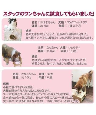 PET PARADISE ドッグフード リアルフード フローラ 2kg《1kg×2袋》 0