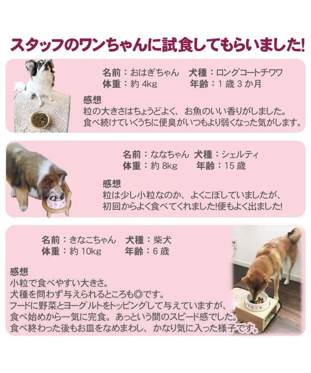 PET PARADISE ドッグフード リアルフード フローラ 2kg《1kg×2袋》