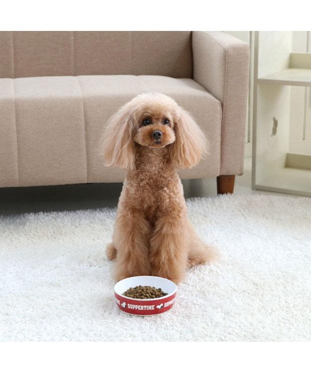 PET PARADISE スヌーピー メラミン えさ皿 犬 食器