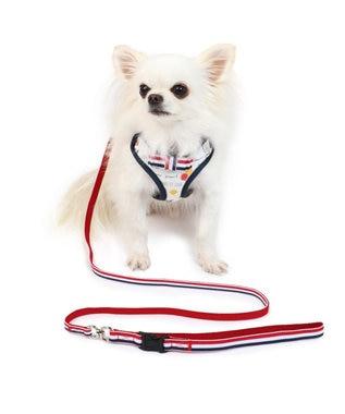 PET PARADISE リサとガスパール 風船柄 ハーネスリード 3S〔超小型犬〕 マルチカラー