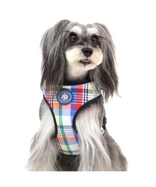 PET PARADISE J.PRESS マドラス ハーネス&リード SS 小型犬 マルチカラー