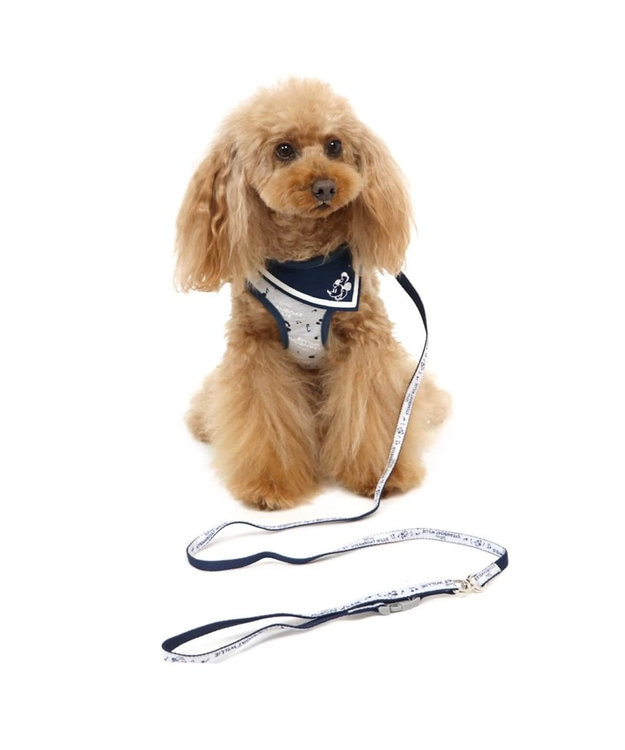 PET PARADISE ミッキーマウス ウィリー ハーネスリード 4S 〔超小型犬〕