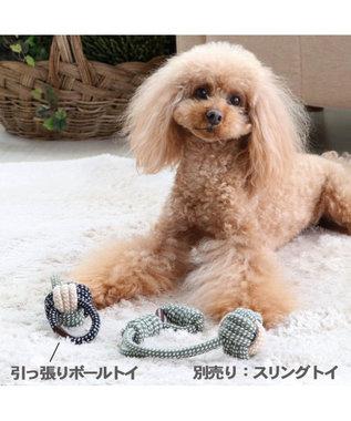 PET PARADISE ペットパラダイス 引っ張りボール トイ カーキ カーキ