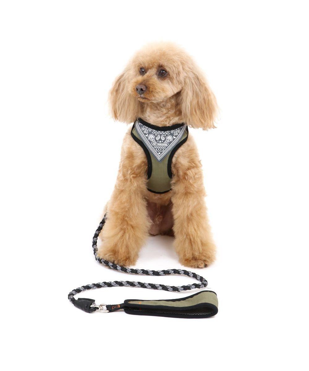 PET PARADISE 犬 ハーネス リード ハーネスリード 4S 〔超小型犬〕 編み紐リード 小型犬 おさんぽ おでかけ お出掛け おしゃれ オシャレ かわいい カーキ