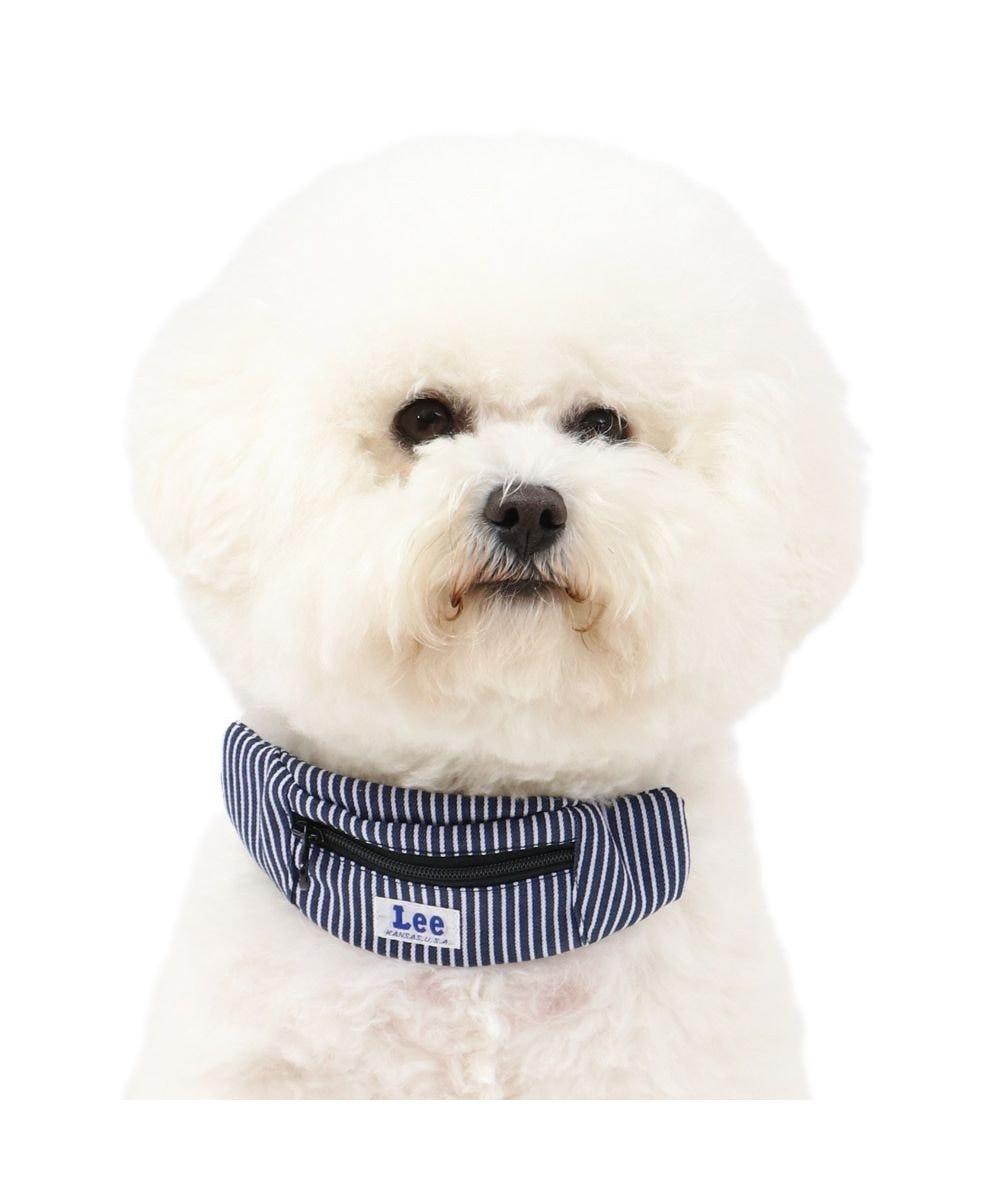 PET PARADISE 犬 首輪 ペットパラダイス Lee ロープロゴ柄 ヒッコリーポーチ付き 首輪 SS〔小型犬〕 紺(ネイビー・インディゴ)