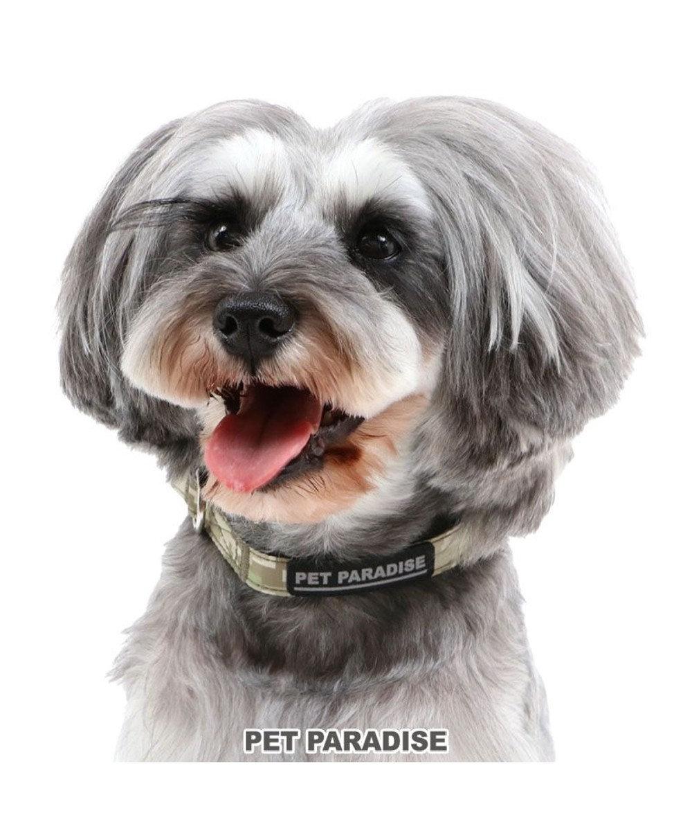 PET PARADISE 犬 首輪 【SS】 デジカモ 小型犬  迷彩 おさんぽ おでかけ お出掛け おしゃれ オシャレ かわいい カーキ