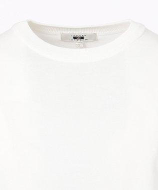 JOSEPH ABBOUD ハイツイストコットンパネルボーダー ニットTシャツ ホワイト系2