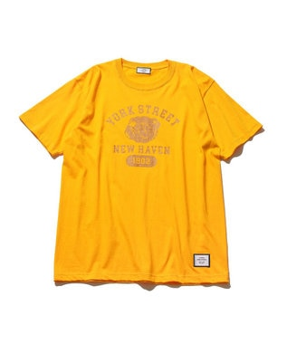 J.PRESS YORK STREET 【UNISEX】YORK STREET カレッジ Tシャツ マスタード系