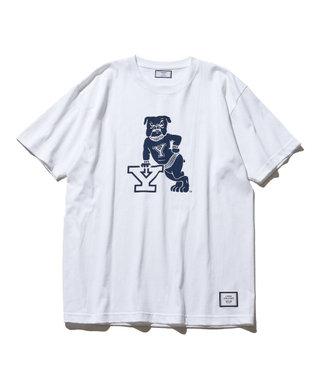 J.PRESS YORK STREET 【UNISEX】YALE × J.PRESS YORK STREET  コラボTシャツ ホワイト系