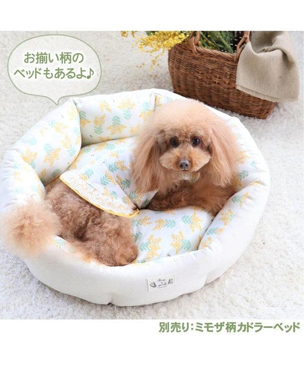 PET PARADISE ペットパラダイス ミモザ柄 タンクトップ 〔超小型・小型犬〕