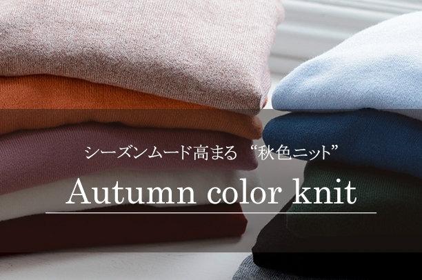秋色ニット